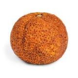 Высушенный старый перезрелый tangerine Стоковая Фотография RF