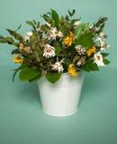 Высушенный стоцвет в ведре Стоковое Фото