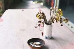 Высушенный цветок в вазе Стоковые Изображения