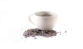 Высушенный чай лаванды в чашке Стоковые Фото