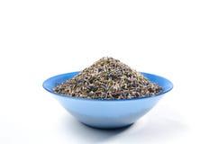 Высушенный чай лаванды органический в деревянной ложке изолированной на белой предпосылке Стоковое Изображение