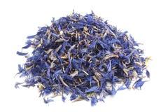 Высушенный чай cornflower стоковое фото rf