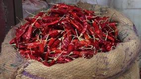 Высушенный chili жителей Кашмираа на рынке в Керале, Индии видеоматериал