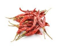 Высушенный chili как предпосылка еды Стоковые Изображения RF