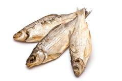 3 высушенных рыбы Стоковые Изображения RF