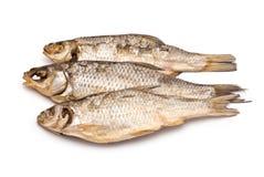 3 высушенных рыбы Стоковая Фотография RF