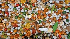 Высушено - плодоовощ и гайки стоковые фото