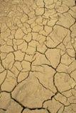 высушено lakebed Стоковая Фотография RF
