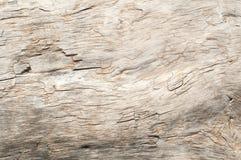 Высушите выдержанную деревянную поверхность стоковые фото
