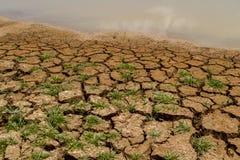 высушите грязь Стоковые Фотографии RF