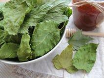Высушите листья blackcurrant и шелковицы в шаре и handmade linen полотенце Опарник с медом стоковое изображение