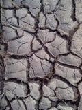 Высушите и обезвоженная земля стоковое изображение