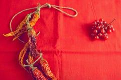 Высушите калину перцев и ягод горячих чилей на яркой красной предпосылке ткани Стоковое Изображение