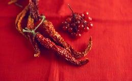 Высушите калину перцев и ягод горячих чилей на яркой красной предпосылке ткани Стоковые Изображения