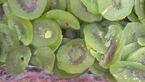 Высушите киви плодоовощ Стоковое Изображение RF