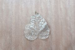 Высушите листья на деревянном столе стоковое фото rf