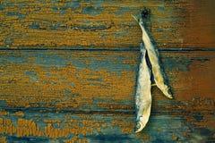Высушите посоленных рыб реки Стоковые Фото
