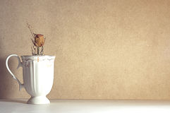 Высушите розовую в белом керамическом стекле на абстрактной коричневой предпосылке Стоковое Изображение