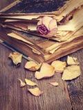 Высушите розовую и книги Стоковое Изображение RF