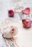 Высушите розовые и старые письма Стоковая Фотография