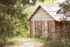 Высушите сосну которая упала на покинутый дом в деревне стоковое изображение rf
