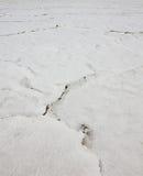 Высушите треснутое Большое озеро. Текстура. Юта, США Стоковое Фото