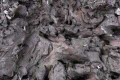 высушите треснутую землю для предпосылки и дизайна Стоковые Изображения RF