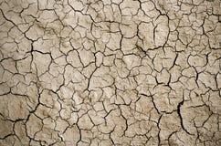 Высушите треснутую землю заполняя рамку как предпосылка стоковые фотографии rf