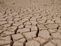 Высушите треснутую землю Стоковая Фотография