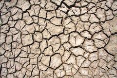 Высушите треснутую землю Стоковые Изображения