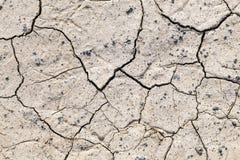 Высушите треснутую землю Стоковое Фото