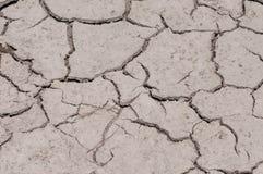 Высушите треснутую поврежденную земную текстуру Стоковые Фото