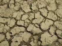 Высушите треснутый крупный план земли пустыни Стоковое Изображение