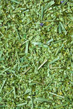 высушите yerba ответной части листьев стоковое фото