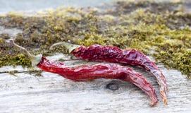 2 высушили пряные красные перцы на старой доске Стоковое Фото