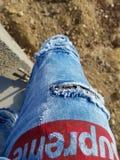 Высшие брюки стоковое фото rf
