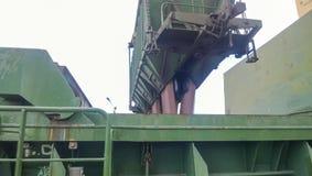 Высыпание зерна от автомобиля в владение топливозаправщика Завалка зерна грузового помещения корабля Стоковые Фото