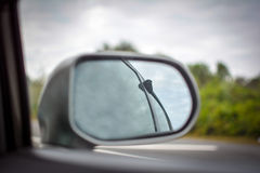 Выследите катание в автомобиле с носом вне окно Стоковое фото RF