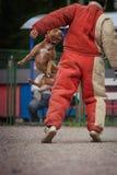 Выследите конкуренцию, тренировку полицейской собаки, собак резвитесь Стоковые Фотографии RF