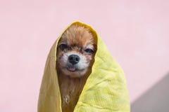 Выследите полотенце после ванны и, который остали в полотенце Стоковые Изображения
