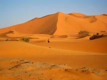 Вытаращиться на гигантской дюне Стоковое Изображение RF
