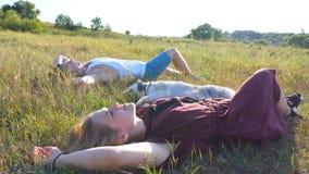 Вытягивайте шею съемка молодых пар в влюбленности лежа на зеленой траве на поле и штрихуя их собаку сибирской лайки на солнечном  видеоматериал