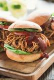 Вытягиванные сэндвичи свинины с соусом bbq, едой пикника стоковые фотографии rf