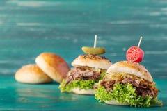Вытягиванный бургер свинины Стоковое Изображение RF