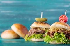Вытягиванный бургер свинины Стоковые Фотографии RF