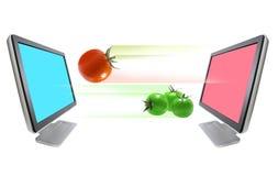 выходить томаты стоковые изображения rf