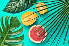 выходит ладонь тропической Яркий комплект лета vegan Стоковые Изображения RF