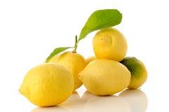 выходит лимоны Стоковое Фото