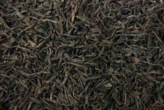 выходит чай Стоковое Изображение RF