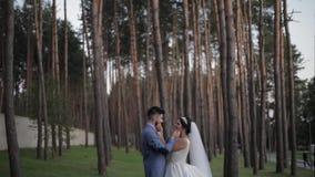 Выхольте с невестой в парке ювелирные изделия cravat пар кристаллические связывают венчание Счастливая семья в влюбленности видеоматериал